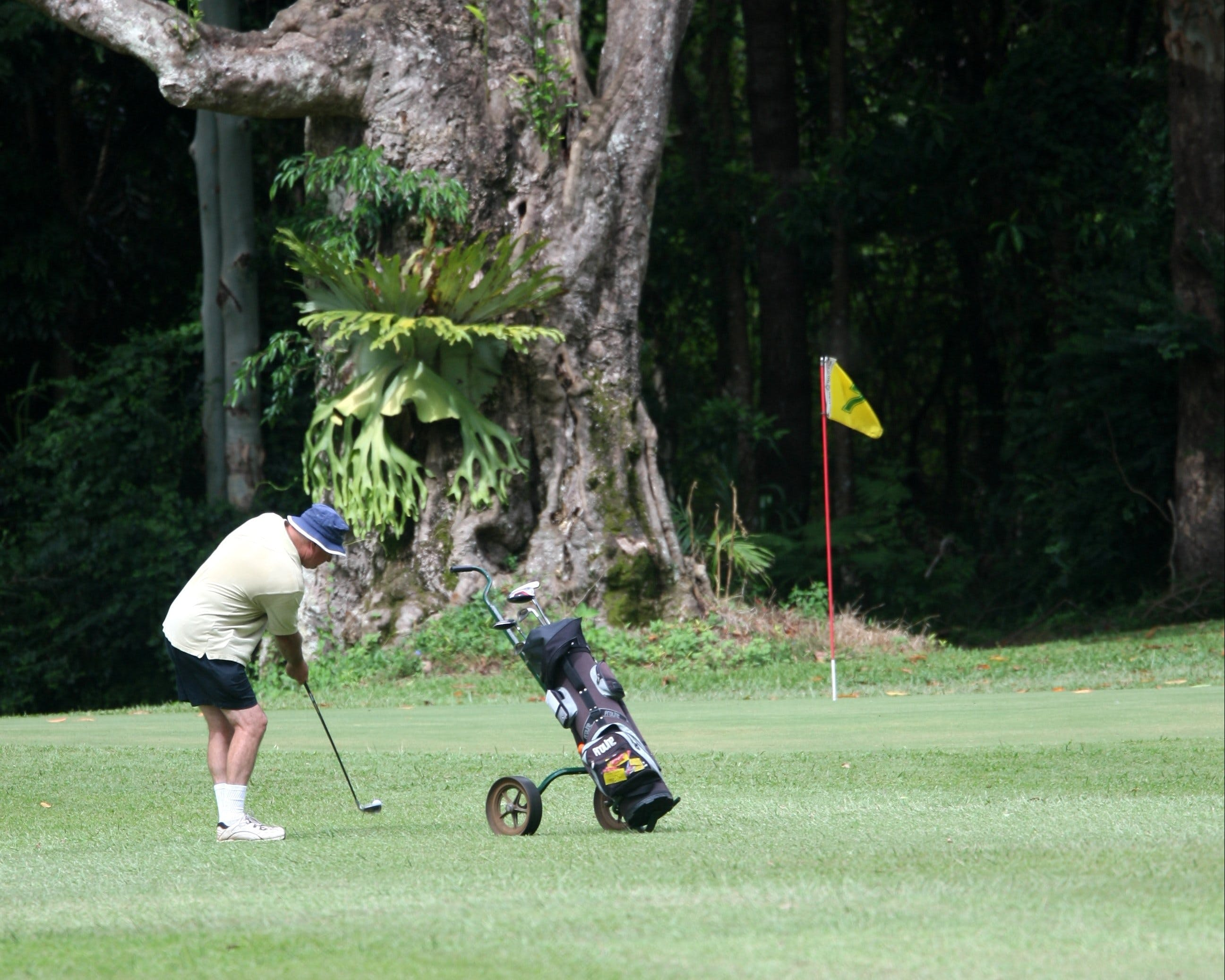 Teven Valley Golf Course - Redcliffe Tourism