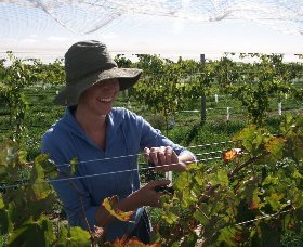 Kingsdale Wines - Redcliffe Tourism