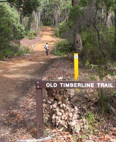 Old Timberline and Sidings Rail Trails - Redcliffe Tourism