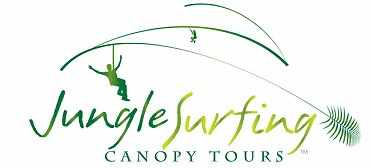 Jungle Surfing Canopy Tours and Jungle Adventures Nightwalks - Redcliffe Tourism