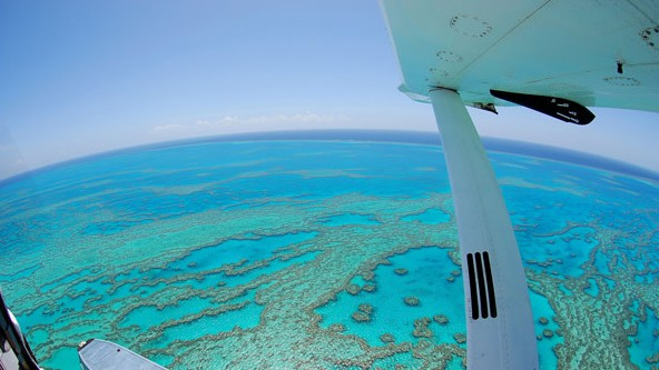Air Whitsunday Day Tours - Redcliffe Tourism