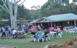 Bush Shack Brewery - Redcliffe Tourism
