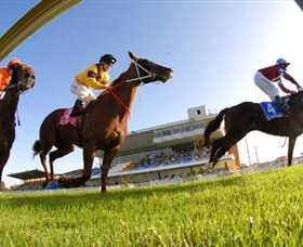 Wyong Race Club - Redcliffe Tourism