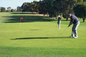 Waikerie Golf Club - Redcliffe Tourism