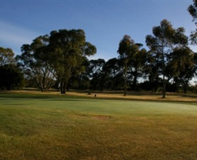 Winchelsea Golf Club - Redcliffe Tourism