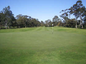 Maffra Golf Club - Redcliffe Tourism