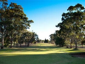 Loxton Golf Club - Redcliffe Tourism