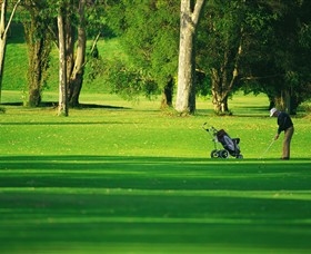 Foster Golf Club - Redcliffe Tourism