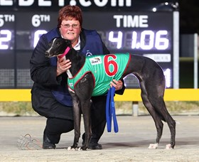 Bulli Greyhound Racing Club - Redcliffe Tourism