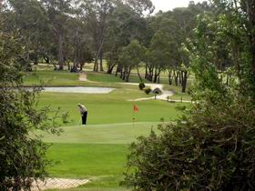 Mount Barker-Hahndorf Golf Club - Redcliffe Tourism