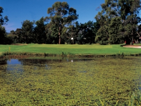 Riverside Golf Club Ltd - Redcliffe Tourism