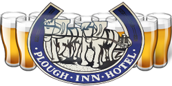 Plough Inn Hotel - Redcliffe Tourism