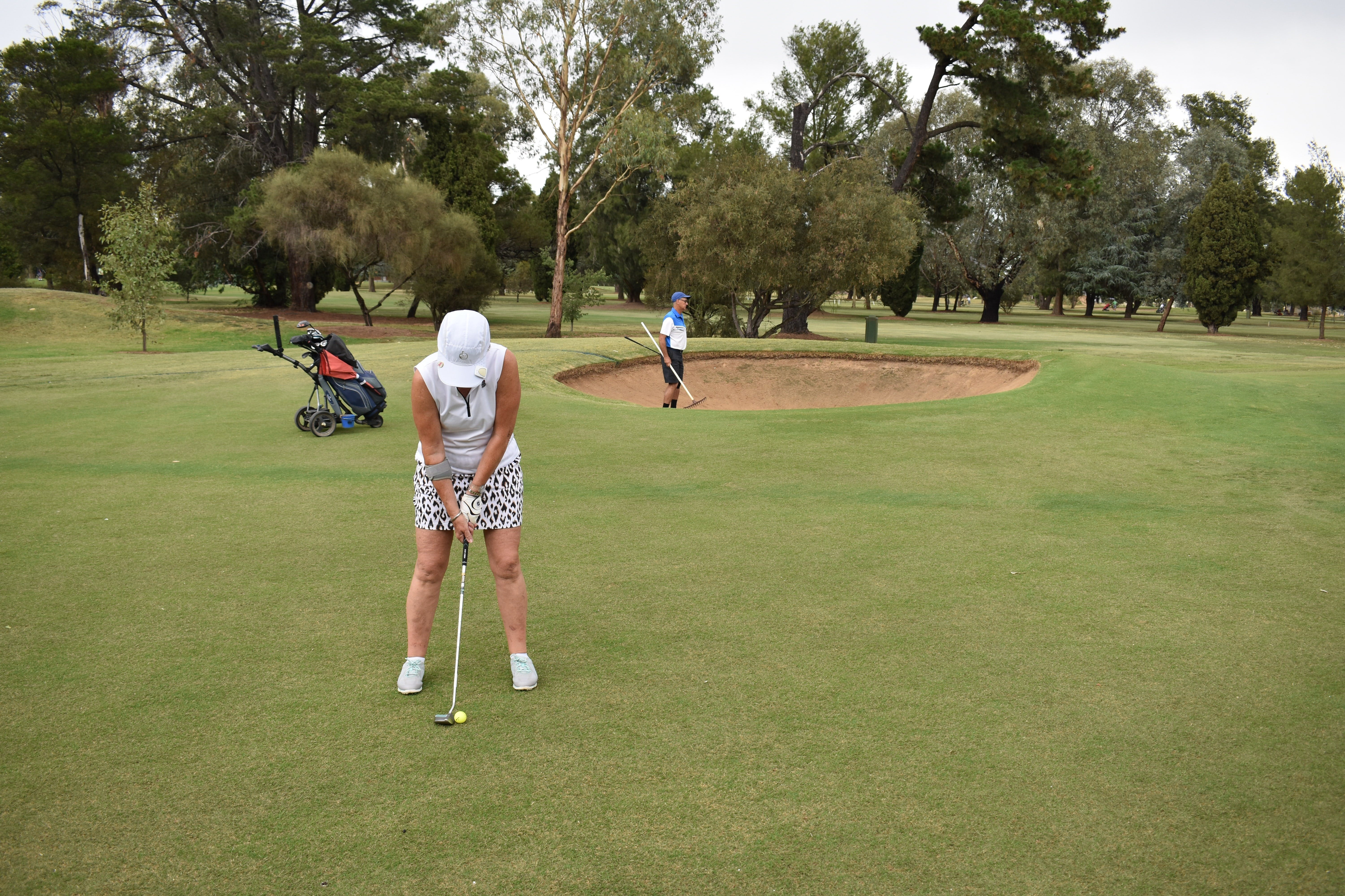 Howlong Golden Shoe Nine Hole Golf Tournament - Redcliffe Tourism