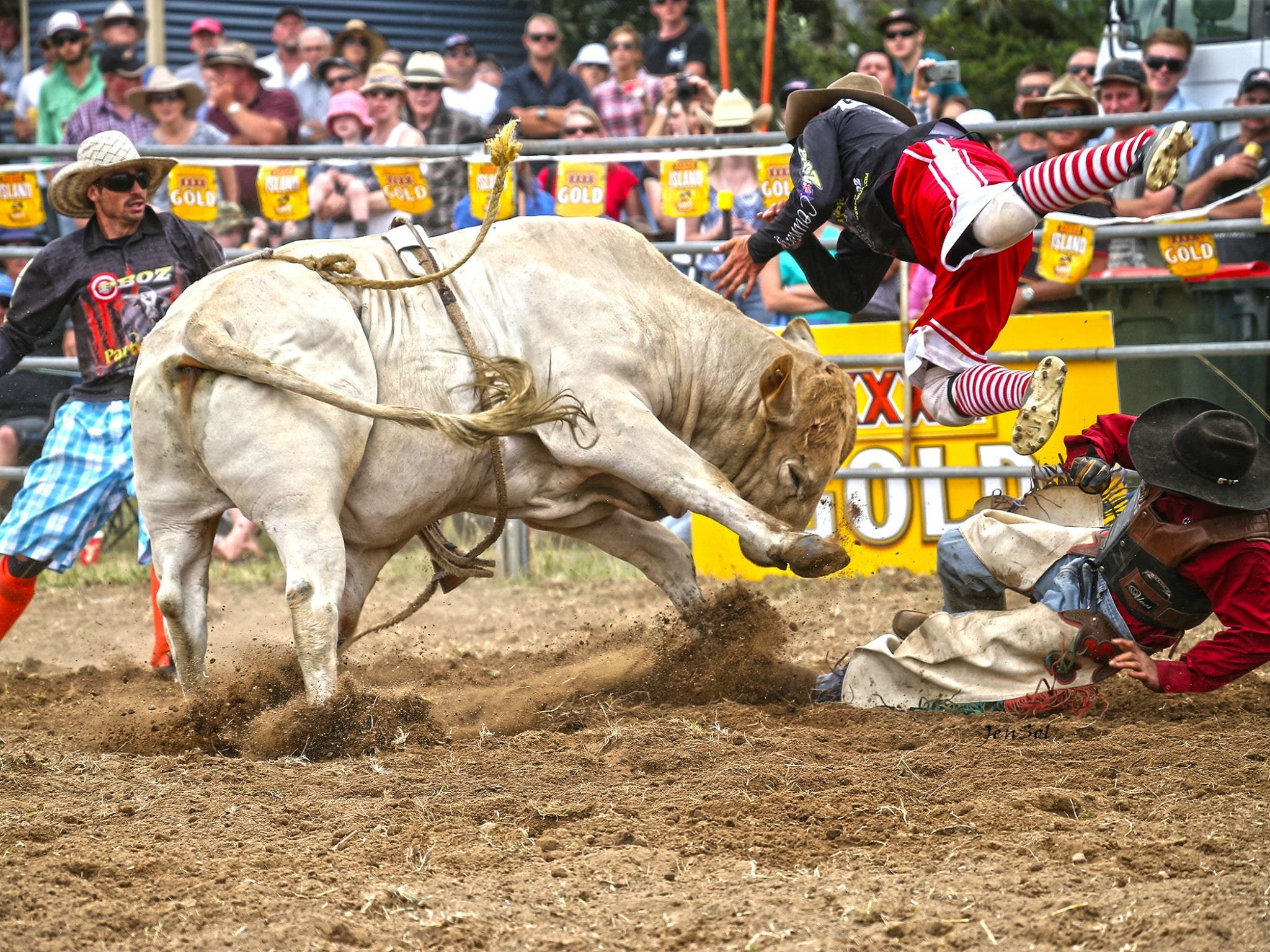 Jindabyne's Man From Snowy River Rodeo - Redcliffe Tourism