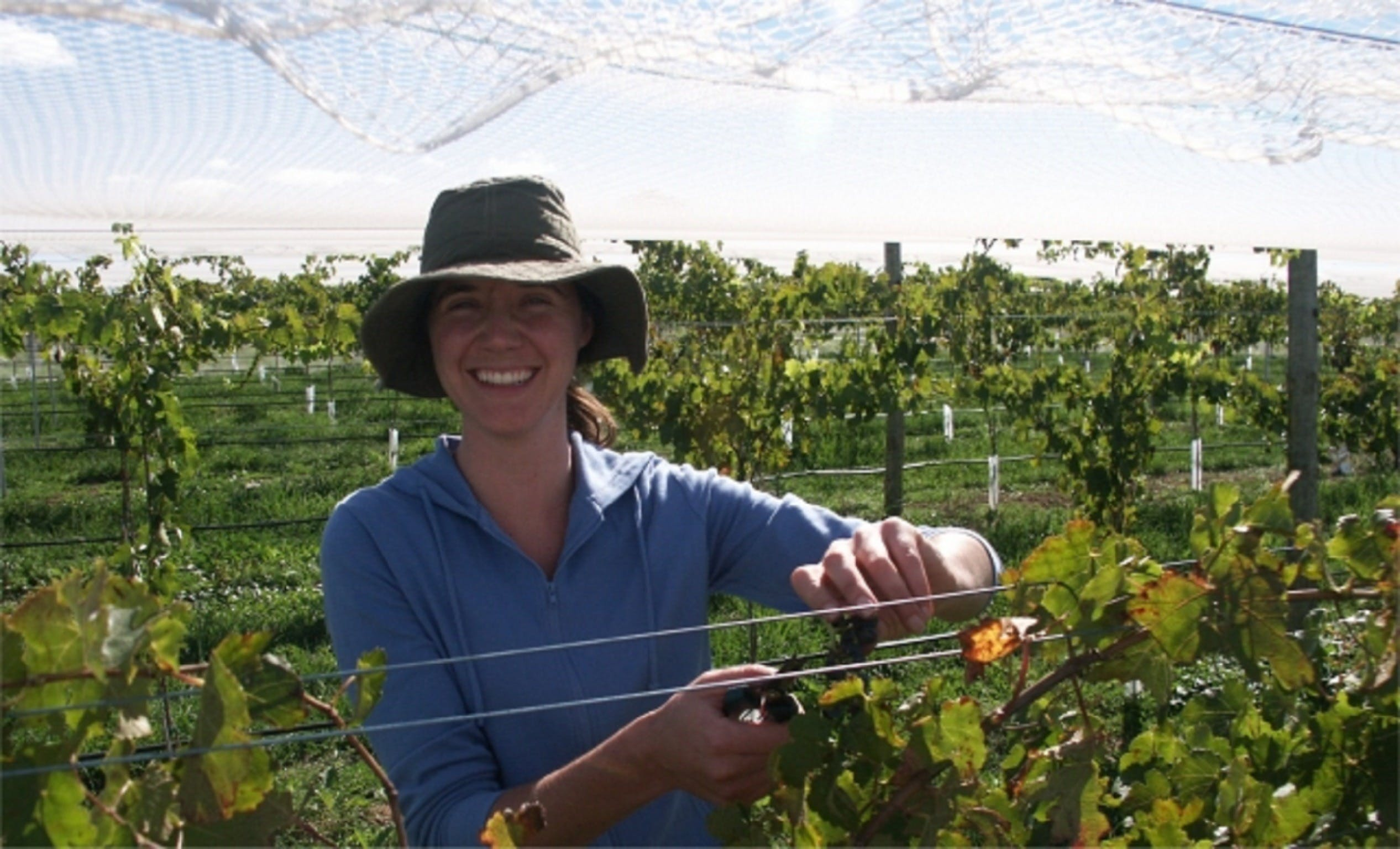 Kingsdale Wines - Cellar Door Wine Tastings - Redcliffe Tourism
