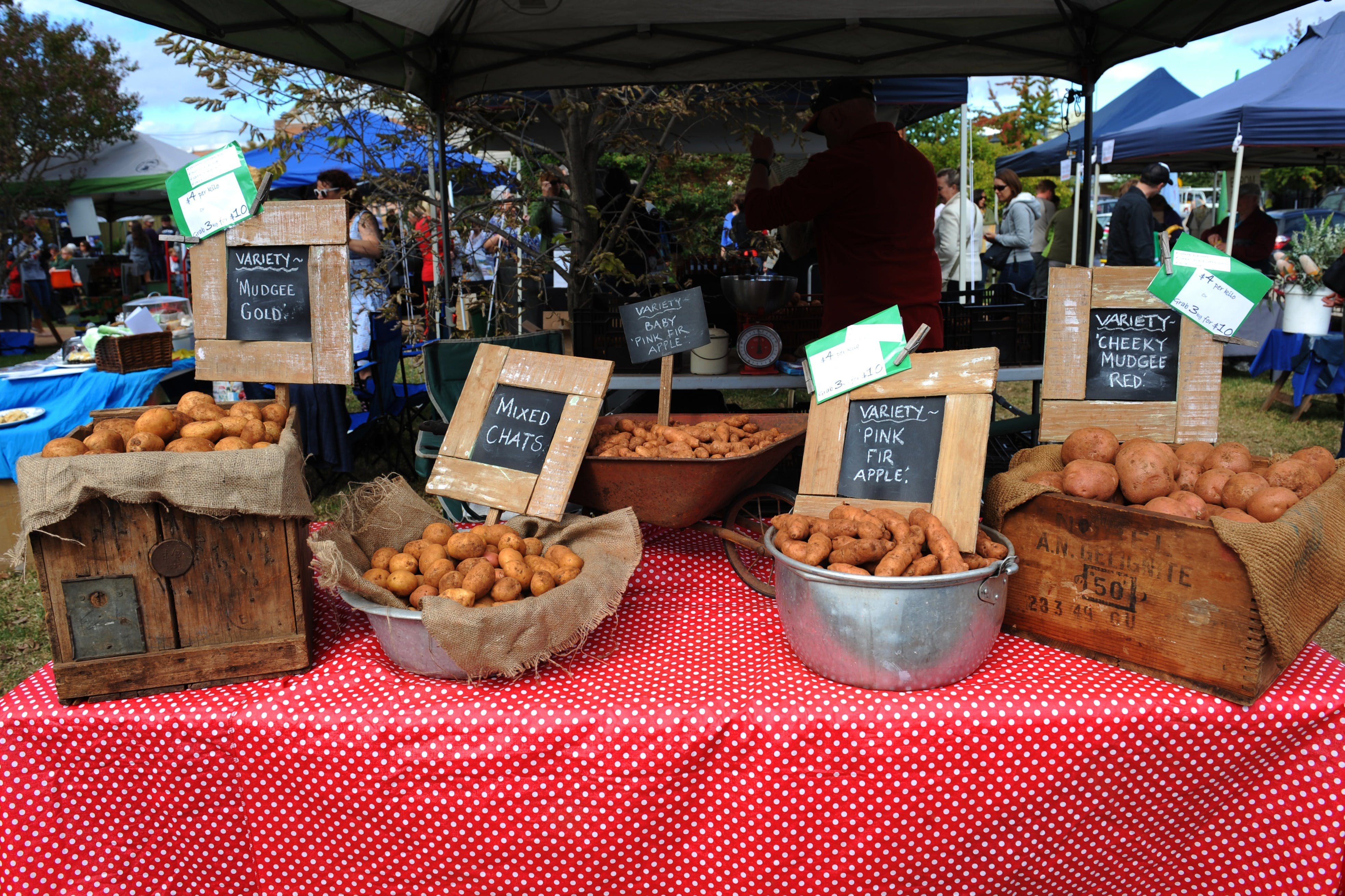 Lawson Park Markets - Redcliffe Tourism