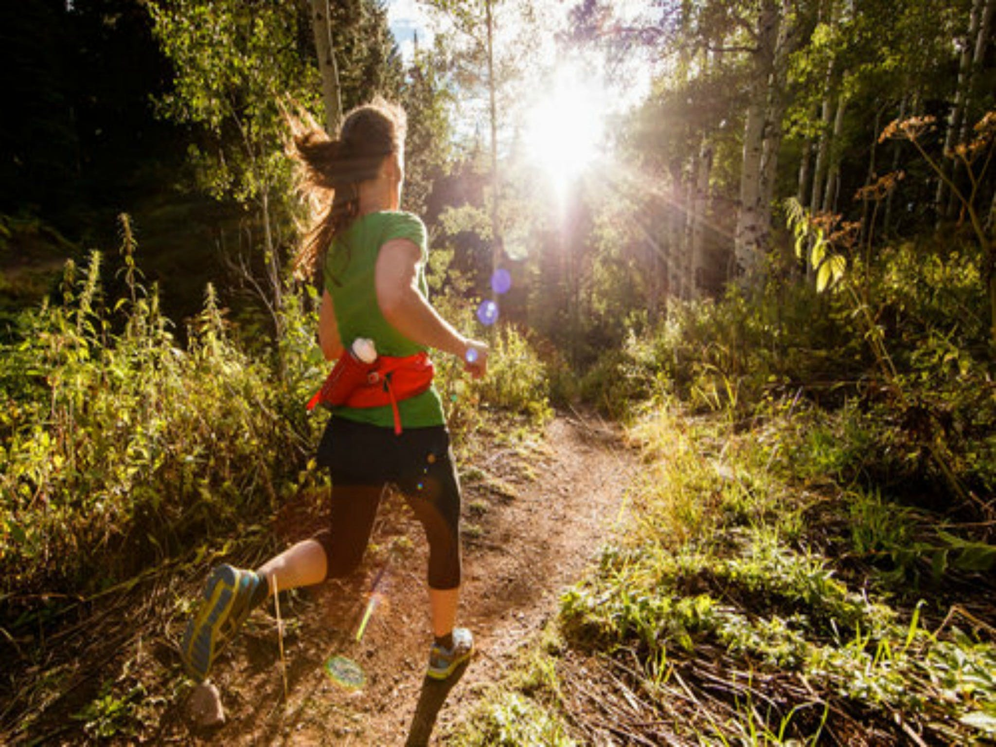 Run Dungog - Redcliffe Tourism