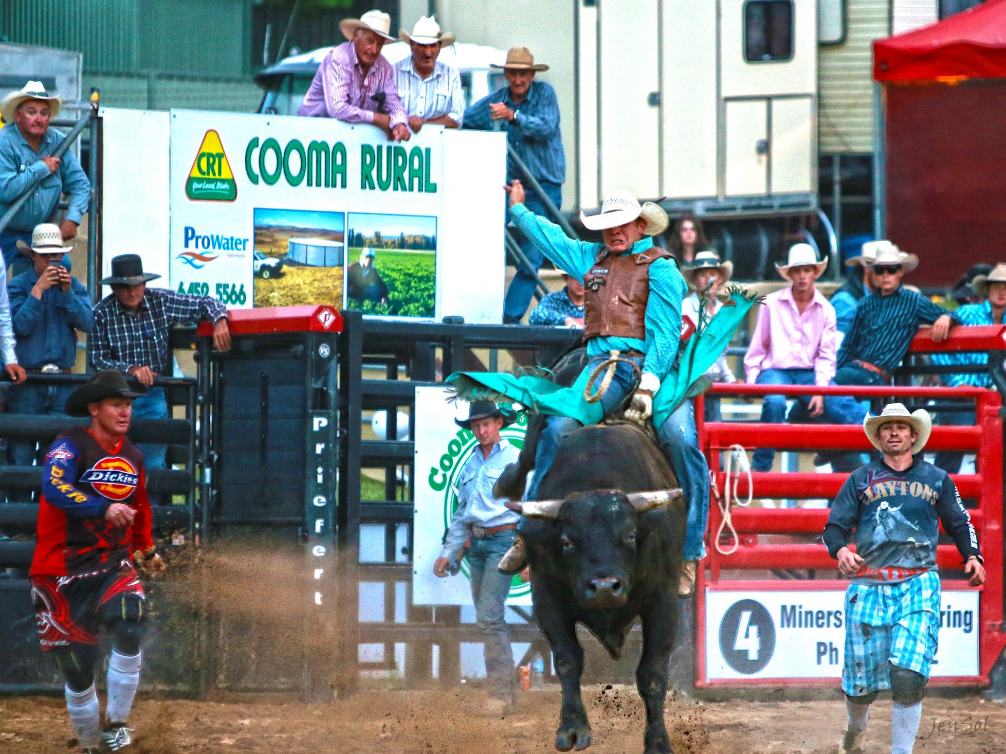 AgriWest Cooma Rodeo - Redcliffe Tourism