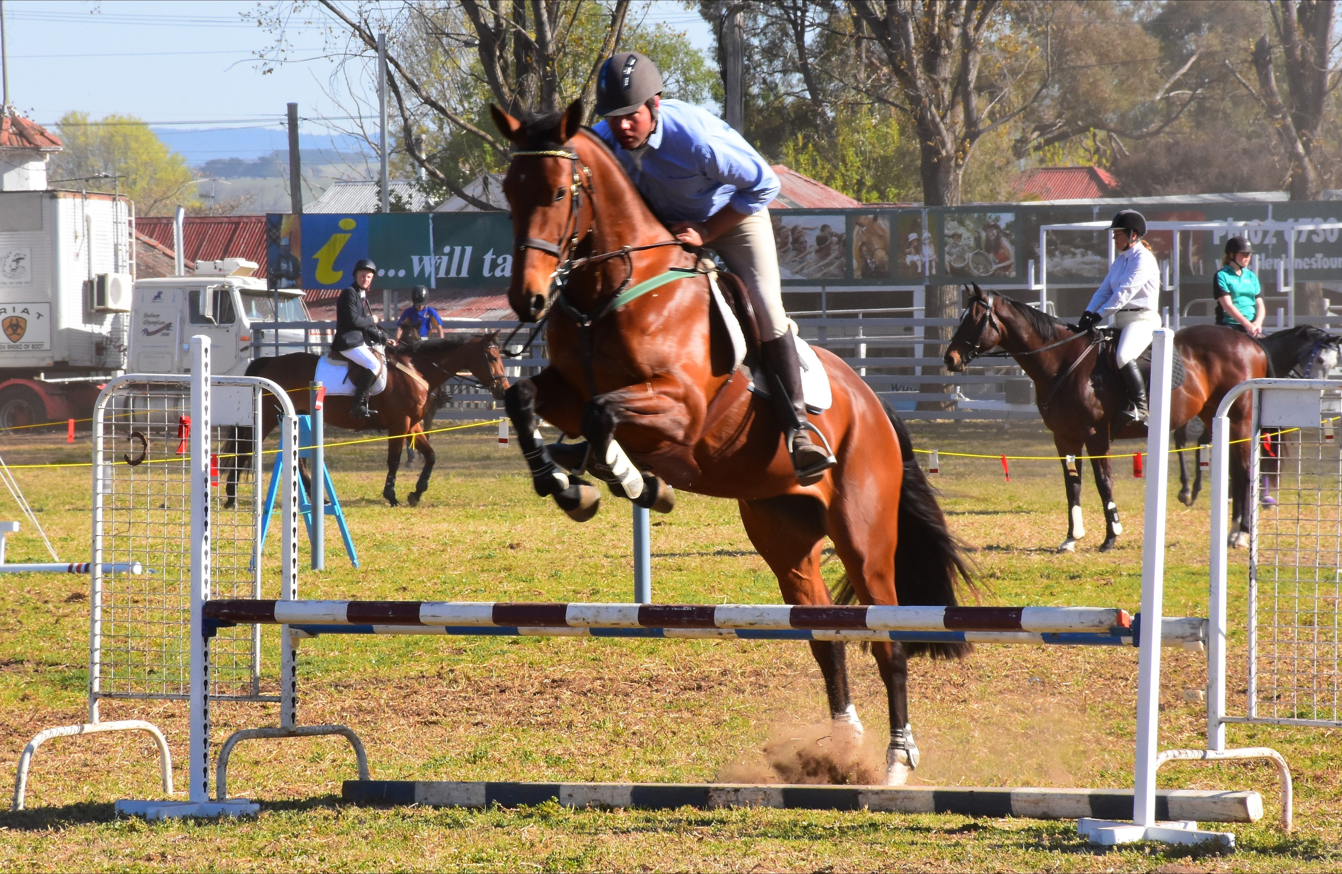 Glen Innes Pastoral and Agricultural Show - Redcliffe Tourism