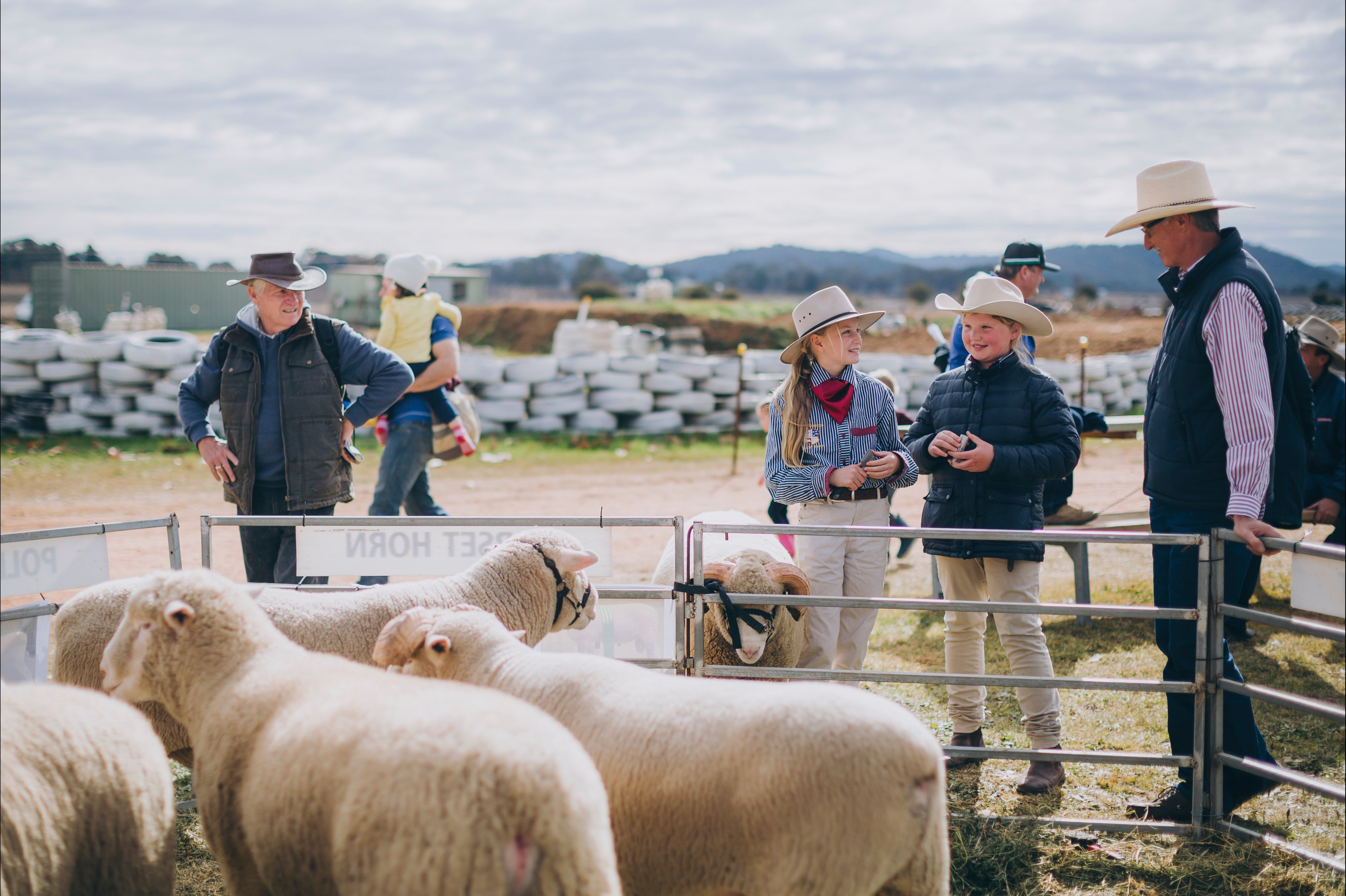 Mudgee Small Farm Field Days - Redcliffe Tourism