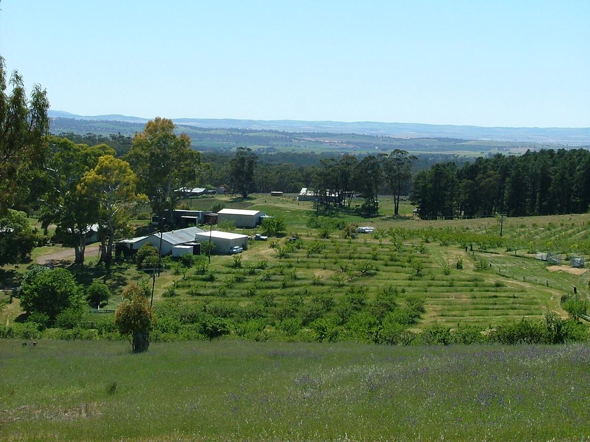 Taralee Orchards - Redcliffe Tourism