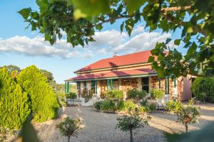 Barossa Shiraz Estate - Redcliffe Tourism