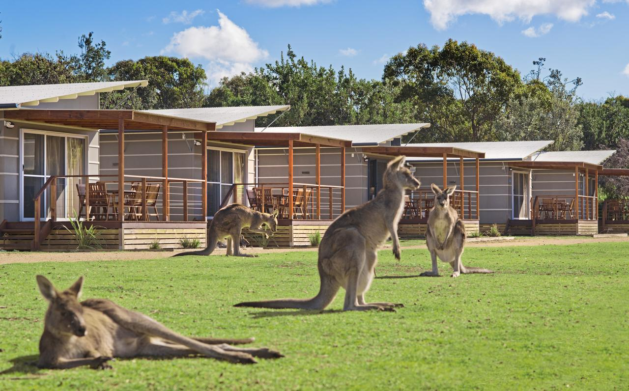 Discovery Parks  Pambula Beach - Redcliffe Tourism