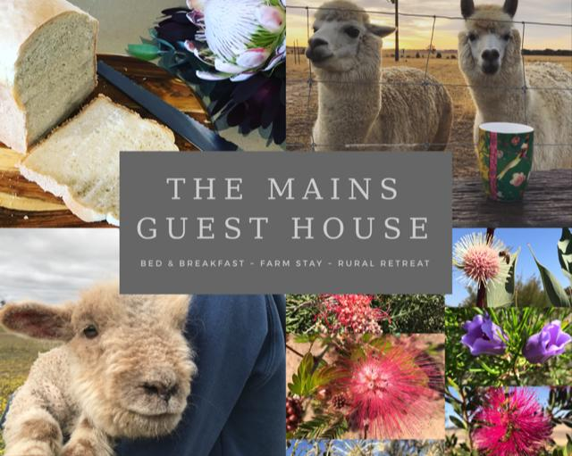 The Mains Guest House - Redcliffe Tourism