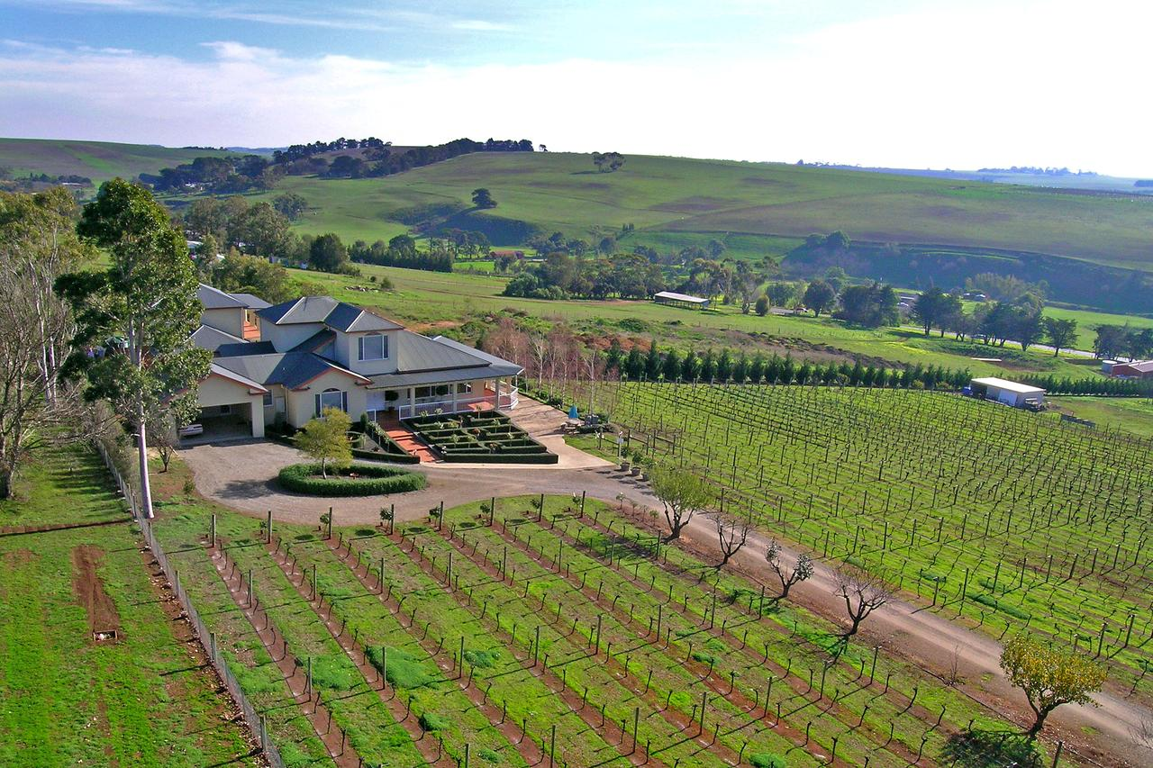 Waybourne- Vineyard and Winery - Redcliffe Tourism