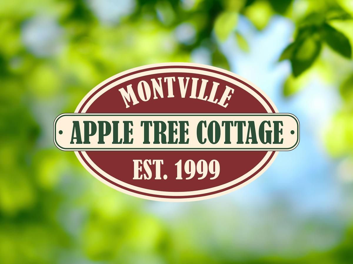 Apple Tree Cottage and Studio - Redcliffe Tourism